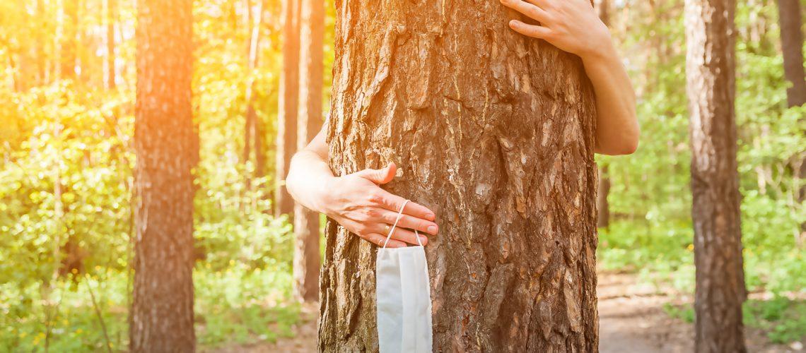 Quarantine,End,Concept.,Hands,Hug,A,Tree,Close-up,And,Copy